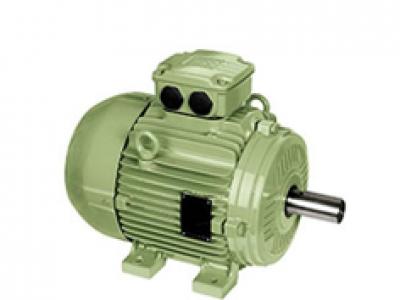 W20三相低压电机